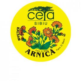 Unguent arnica, 20g, Ceta Sibiu