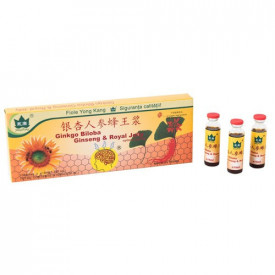Ginkgo Biloba, Ginseng&Royal Jelly, 10fl*10 ml, Yong Kang
