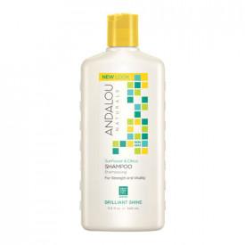 Sunflower & Citrus Brilliant Shine Shampoo, 340ml, Andalou