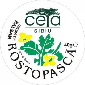 Unguent rostopasca, 40g, Ceta Sibiu