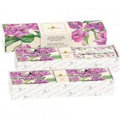 Set cadou odorizant Florinda cu flori de Bougainvillea, La Dispensa