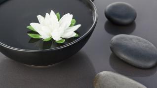 Aer uscat acasa? 5 metode prin care sa mentii un nivel optim de umiditate in locuinta ta