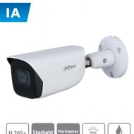 DAHUA DAI0040001 DAHUA IPC-HFW3441E-AS - C