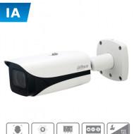 DHT0030011 DAHUA DAHUA IPC-HFW5442E-ZE - C