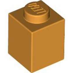 Medium Orange Brick 1 x 1 - used