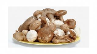 Ciupercile comestibile benefice pentru sanatate