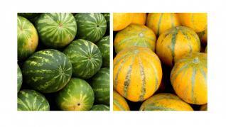 Pepenii verzi si galbeni benefici pentru rinichi
