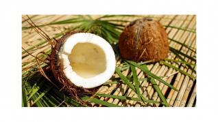 Nuca de cocos bogata in minerale
