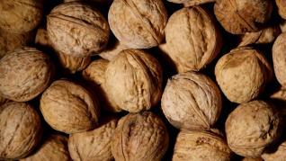 Nucile unele dintre cele mai concentrate surse de nutrienti