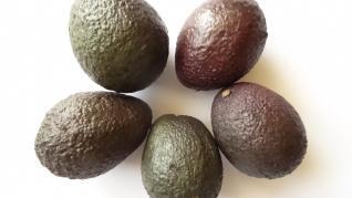 Avocado sporeste vitalitatea