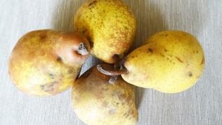 Perele, fructe benefice pentru controlul presiunii sangvine.