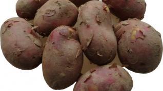 Cartofii a patra cea mai consumata leguma din lume.