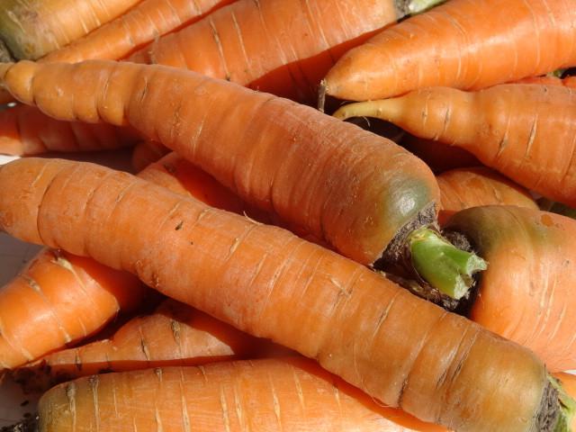 Morcovii o sursa exceptionala de beta caroten