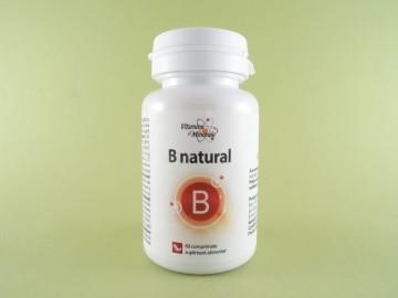 B natural  DACIA PLANT