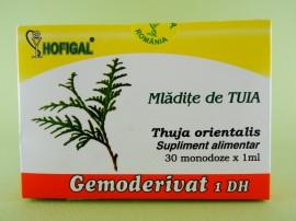 Mladite de tuia - gemoderivat HOFIGAL (30 de monodoze x 1 ml)