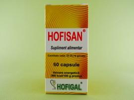 Hofisan HOFIGAL