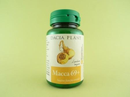 Macca 69+ DACIA PLANT