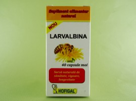 Larvalbina HOFIGAL