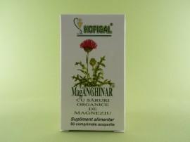 MagANGHINAR  HOFIGAL