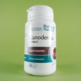 Ganoderma extract ROTTA NATURA (30 de capsule)