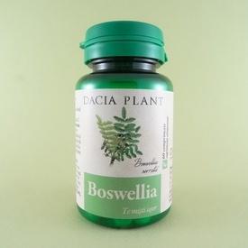 Boswellia DACIA PLANT (60 de comprimate)