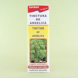 Tinctura de angelica  FAVISAN (50 ml)