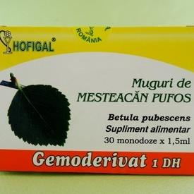 Muguri de mesteacan pufos - gemoderivat HOFIGAL (30 de monodoze x 1,5 ml)
