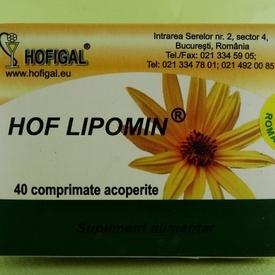 Hof Lipomin HOFIGAL (40 de comprimate acoperite)