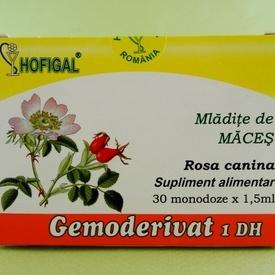 Mladite de maces - gemoderivat HOFIGAL (30 de monodoze x 1,5 ml)