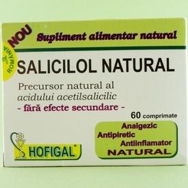 Salicilol natural HOFIGAL (60 de comprimate)