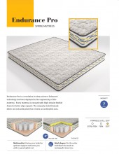 "Centuary Endurance Pro Pillow Top Pocket Spring Mattress 8"" With 7 Years Warranty"