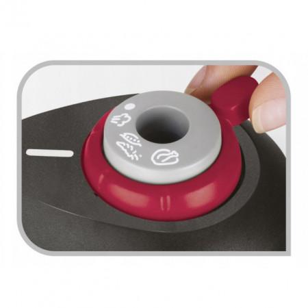 Oala sub presiune Tefal Secure 5 Neo Color, capacitate 6 litri, inox, argintiu, inductie
