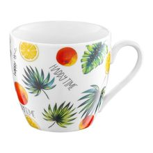 Cana 510ml fructe Tropical