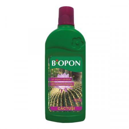 Biopon pentru cactusi