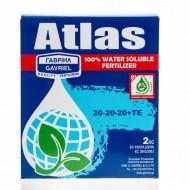 Atlas 20 - 20 - 20 +TE