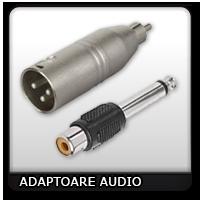 Adaptoare Audio