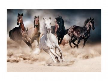 Tablou din sticla Horses 120 x 80 cm