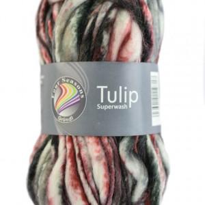 Fire neregulate de tricotat sau crosetat - TULIP - Superwash - Degrade 04