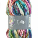 Fire neregulate de tricotat sau crosetat - TULIP - Superwash - Degrade 08