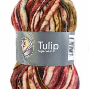 Fire neregulate de tricotat sau crosetat - TULIP - Superwash - Degrade 07