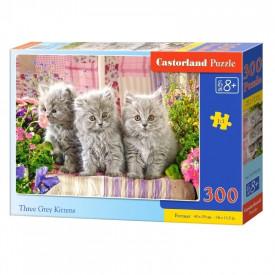 Puzzle 300 Pcs premium - Castorland
