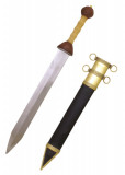 Gladius with scabbard [MI0101010122]