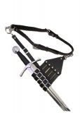 Belt with holder for Rapier