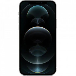 APPLE IPhone 12 Pro Max Dual Sim Fizic 256GB 5G Argintiu
