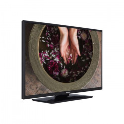 Televizor profesional Philips EasySuite
