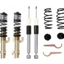 Coilovers DTS Line Seat Ibiza 6J