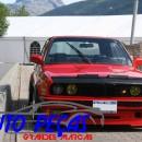 Car Bra (protecção de capô) BMW E30