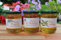 Tris di miele - Acacia, Millefiori, Castagno
