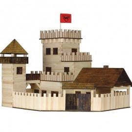 Poze Castel