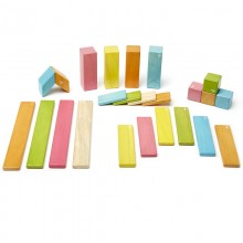 Set 24 piese din lemn magnetic, Tegu Tints